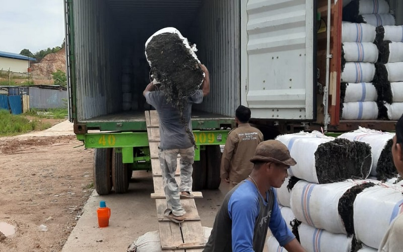 Ekspor komoditas rumput laut Batam, Kepulauan Riau - Bisnis/Bobi Bani