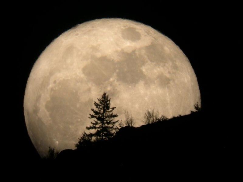 Fakta tentang bulan yang mengejutkan adalah bulan setiap tahun mencuri sedikit energi dari bumi untuk menjauh dari bumi. - Space