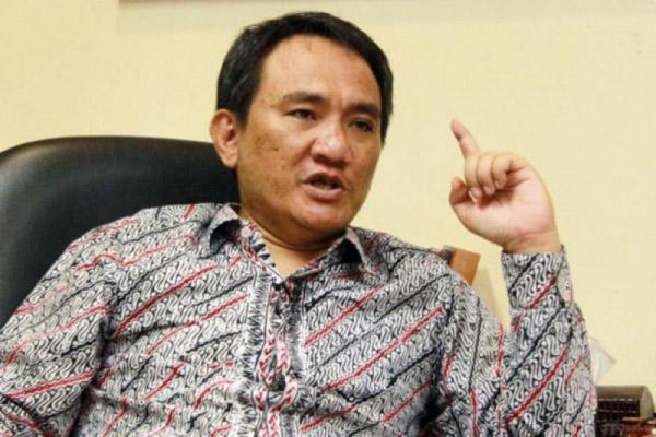 Ketua Badan Pemenangan Pemilu (Bappilu) Partai Demokrat Andi Arief - Antara