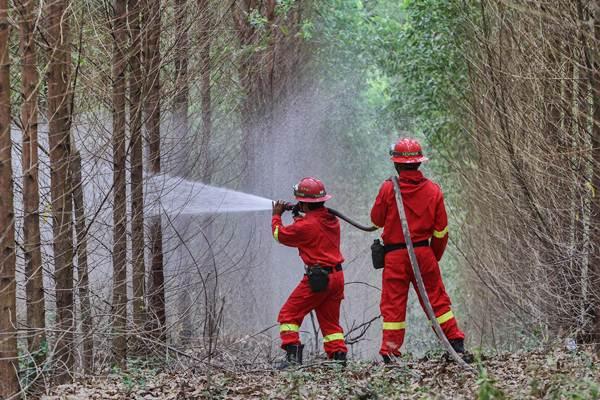 Simulasi pemadaman kebakaran hutan dan lahan di Kabupaten Siak, Riau. - Antara/Rony Muharrman