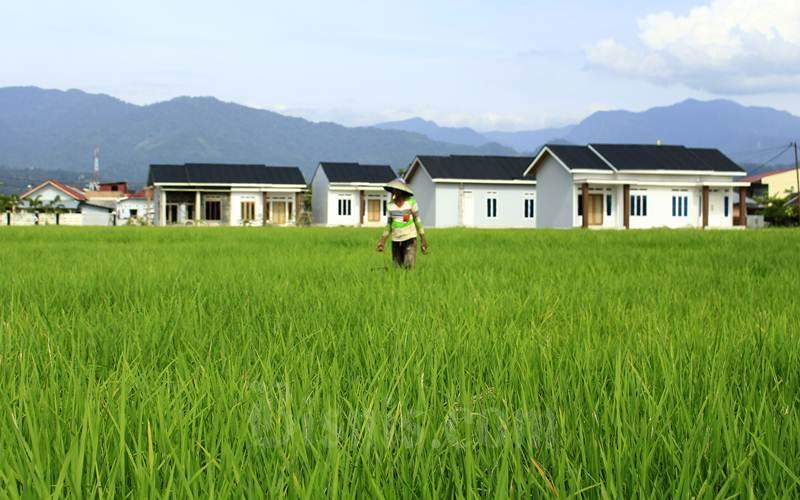 Ilustrasi petani tengah berada di sawah berlatar belakang perumahan./Bisnis - Noli Hendra