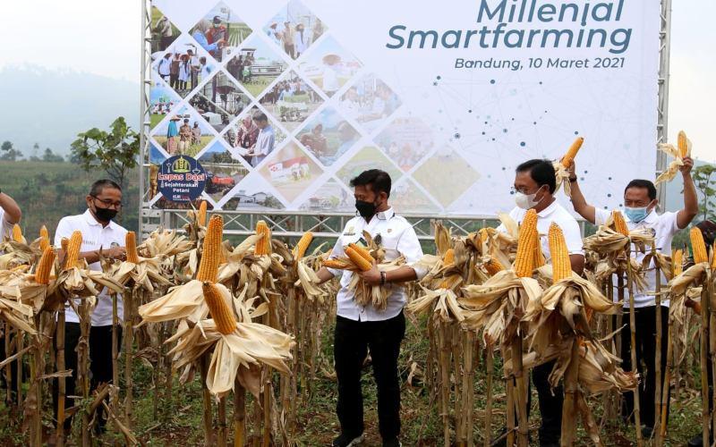 Menteri Pertanian Syahrul Yasin Limpo(kedua kiri), Direktur Hubungan Kelembagaan BNI Sis Apik Wijayanto (kedua kanan), dan Kepala Biro PerekonomianSekretariat Daerah (Setda) Provinsi Jabar Benny Bachtiar (kiri) sedang memanen jagung pada program Millennial Smartfarming di Desa Narawita, Kecamatan Cicalengka, Kabupaten Bandung, Jawa Barat pada Rabu, 10 Maret 2021.  - Dok. BNI
