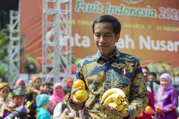 Presiden Joko Widodo membawa buah jeruk dan pisang lokal asli Indonesia. Membuat air infus jeruk nipis sangat mudah.   - Antara/Widodo S. Jusuf