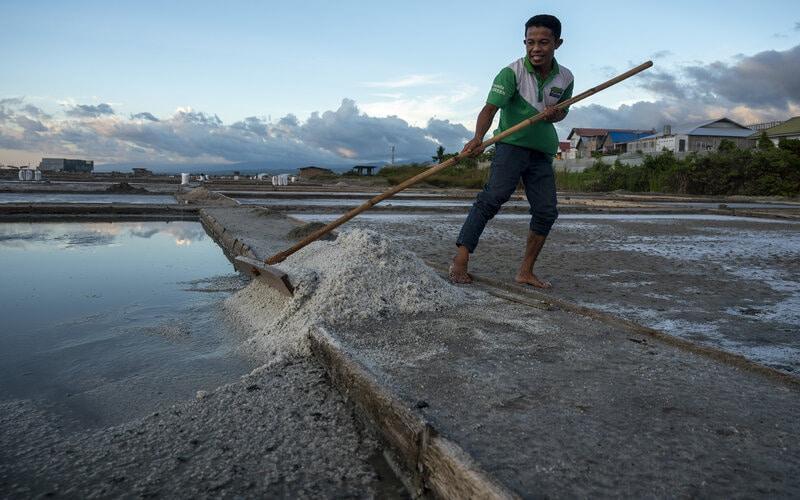 Petani memanen garamnya yang diperuntukkan sebagai bahan pupuk di kawasan penggaraman Talise, Palu, Sulawesi Tengah, Rabu (17/3/2021). Pemerintah kembali membuka keran impor garam sebanyak 3,07 juta ton di tahun 2021 untuk memenuhi kekurangan garam bagi industri dalam negeri dan kurangnya kualitas garam rakyat yang dinilai masih berada di bawah standar kadar untuk industri. - Antara/Basri Marzuki.