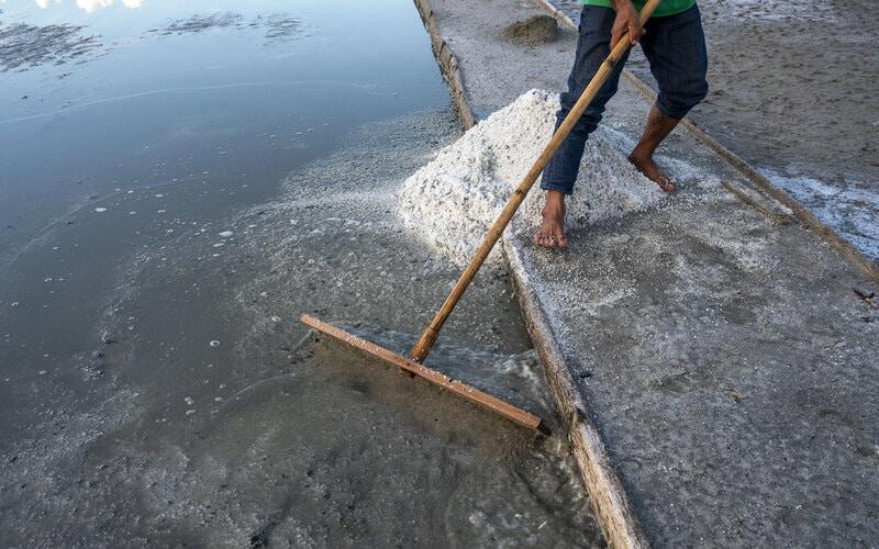 Petani memanen garam yang digunakan sebagai bahan pupuk di kawasan penggaraman Talise, Palu, Sulawesi Tengah, Rabu (17/3/2021). Pemerintah kembali membuka keran impor garam sebanyak 3,07 juta ton di tahun 2021 untuk memenuhi kekurangan garam bagi industri dalam negeri dan kurangnya kualitas garam rakyat yang dinilai masih berada di bawah standar kadar untuk industri. - Antara/Basri Marzuki.