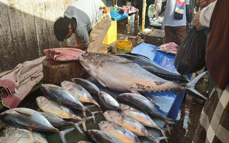 Aktivitas di Tempat Pelelangan Ikan (TPI) Hamadi di Jayapura, salah satu denyut nadi perekonomian Papua./Antara - Evarukdijati