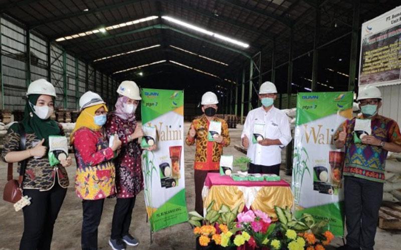 Gula kemasan 1 kg yang akan dipasok oleh PT BCN anak perusahaan PTPN VII pada Juni 2021 bertepatan dengan musim giling. - Antara