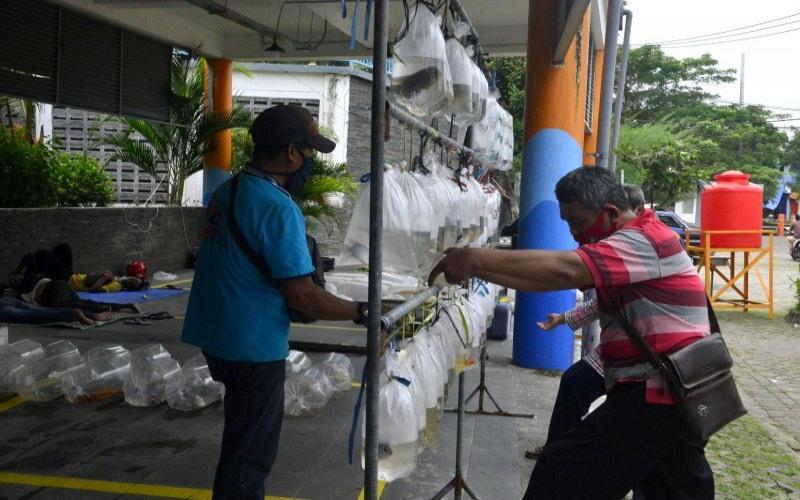 Penjual ikan hias sedang melayani pembeli di Sentra Ikan Bulak Kota Surabaya. - ANTARA/Pemkot Surabaya