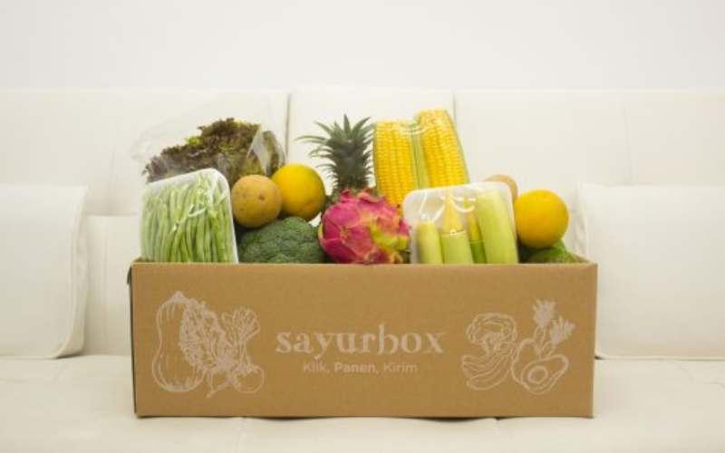 Blog Sayurbox. - istimewa
