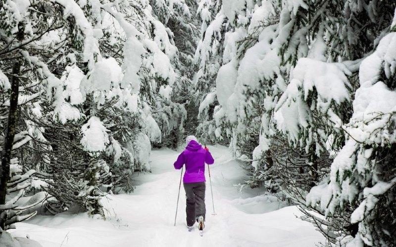 Ski dan berjalan kaki lintas alam adalah yang paling populer, berbagai aktivitas luar ruangan dinikmati di Norwegia mulai dari lari lintas alam hingga kereta luncur anjing.  - Bloomberg