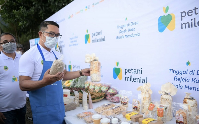 Program Petani Milenial - Istimewa