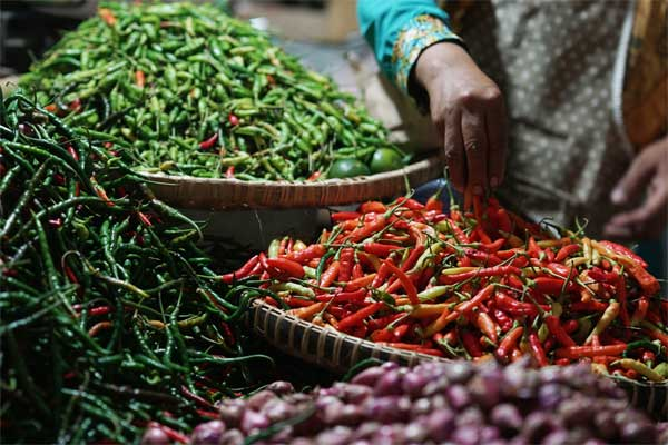Pedagang cabai di sebuah pasar tradisional Wonosari, Yogyakarta. - Bloomberg/Dimas Ardian