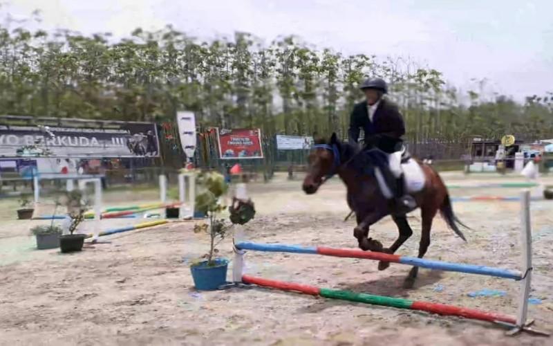 Atlet berkuda sedang melakukan Show Jumping, yang digelar Pordasi Kota Pekanbaru.  - Istimewa