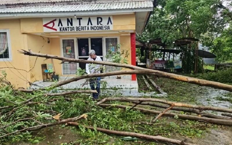 Warga membersihkan pohon tumbang di halaman kantor Antara Biro NTT di Kupang, Senin (5/4/2021). - Antara