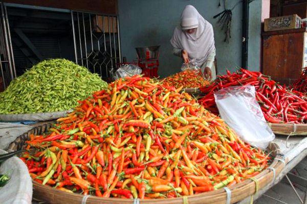 Pedagang cabai rawit di Pasar Legi, Solo. - JIBI