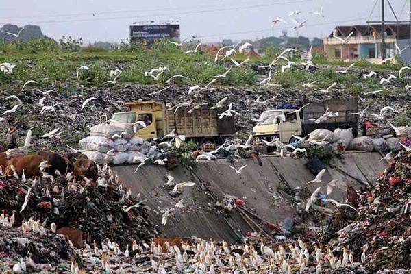 Ilustrasi: Tempat pembuangan akhir sampah Suwung di Bali - Istimewa