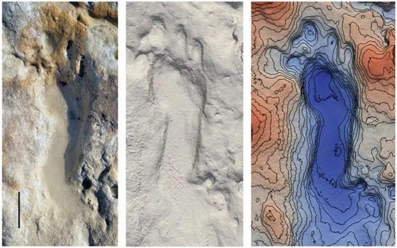 Fosil anak purba di pantai Spanyol