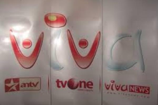Logo VIVA Group