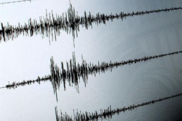 Grafik hasil pencatatan seismograf, alat pencatat besaran gempa bumi. - Reuters