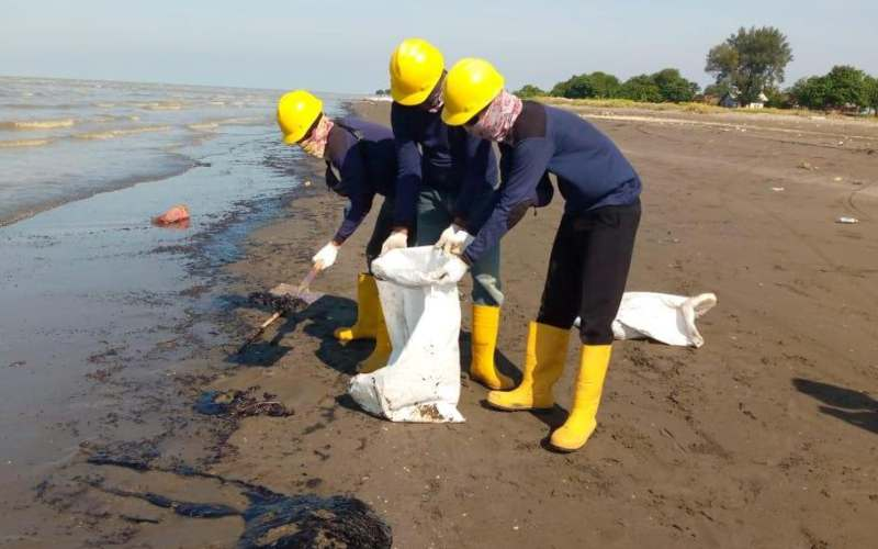 Upaya pembersihan pantai di Desa Cemarajaya, Kecamatan Cibuaya, yang tercemar minyak mentah. - istimewa