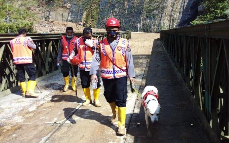 Pencarian korban longsor Batang Toru menggunakan anjing pelacak. - Antara
