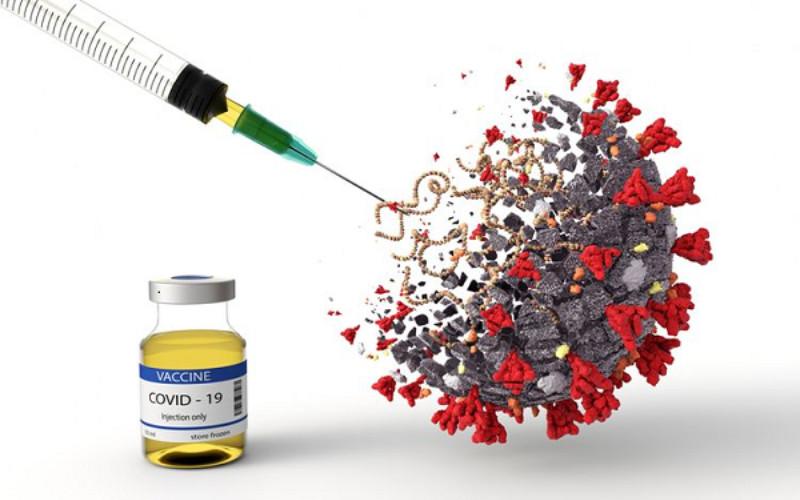Setelah masuk Tim Nasional Pengembangan Vaksin Merah Putih untuk mendukung kemandirian vaksin dalam negeri, LIPI harus bekerja keras untuk mewujudkan vaksin tersebut.  - LIPI