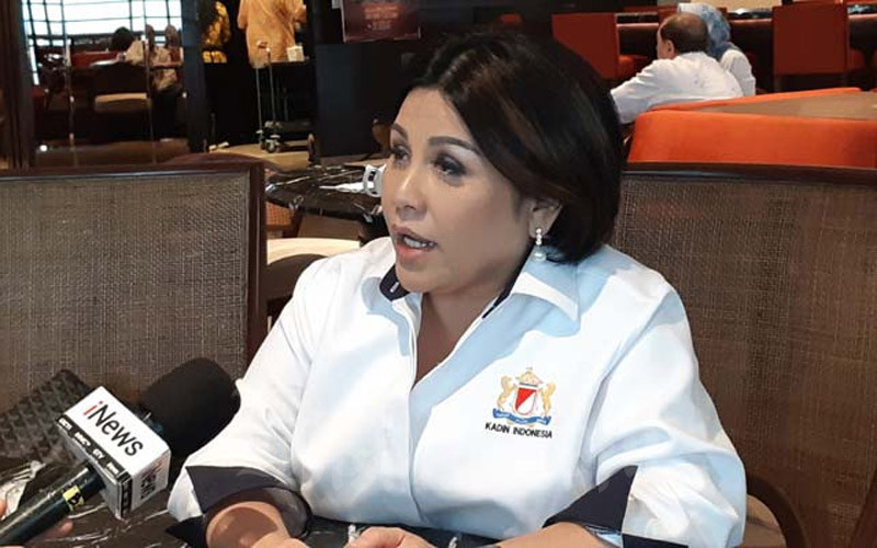 Ketua Umum DPP Indonesian National Shipowners' Association (INSA) Carmelita Hartoto saat ditemui di Menara Kadin, Selasa (18/2/2020). - BISNIS/Rinaldi M. Azka