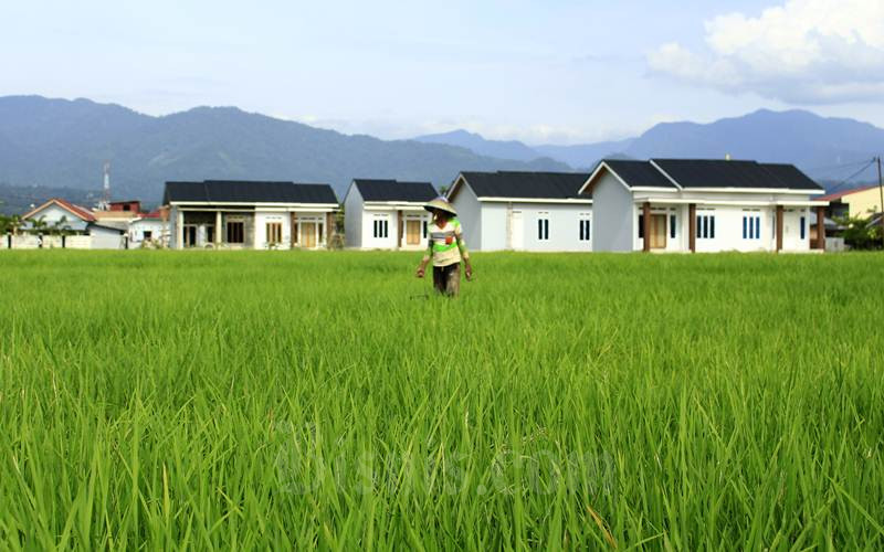 Ilustrasi perumahan yang dibangun di tepi sawah dan berlatar belakang pegunungan./Bisnis - Noli Hendra