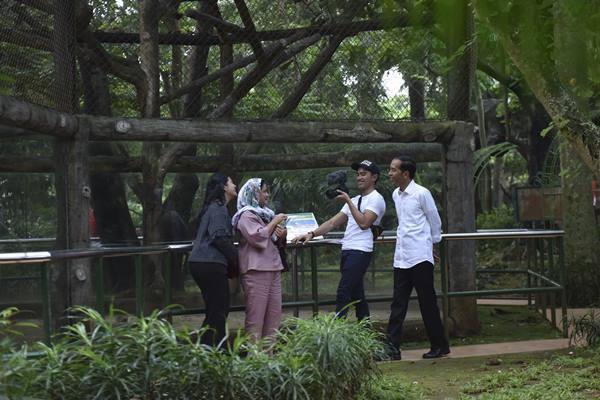 Presiden Joko Widodo (kanan) bersama Ibu Negara Iriana Joko Wododo (kedua kiri) serta putranya Kaesang Pangarep (kedua kanan) dan Kahiyang Ayu mengunjungi Pusat Primata Schmutzer di Kebun Binatang Ragunan Jakarta, Kamis (29/6). Presiden Jokowi memanfaatkan libur lebaran untuk mengunjungi Kebun Binatang Ragunan bersama keluarga. ANTARA FOTO - Wahyu Putro