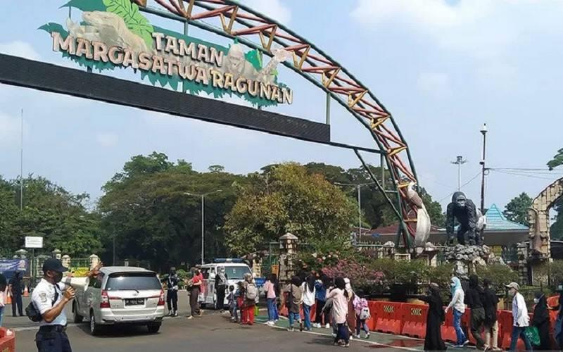 Pengunjung berdatangan ke Taman Margasatwa Ragunan saat masa arus balik Lebaran di Jakarta Selatan, Sabtu (22/5/2021). - Antara\r\n
