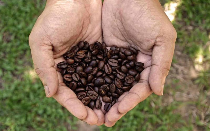 Berbicara tentang kopi di Kosta Rika berarti tertuju pada teknik chorreador.  - roastycoffee.com