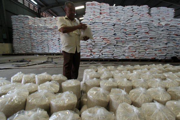 Seorang petugas memeriksa karung berisi beras Bulog, di Medan, Sumatra Utara, Senin (15/6/2015). Stok beras Bulog Divre Sumut hingga pertengahan Juli 2015 mencapai 45.000 ton setara beras dan cukup untuk kegiatan operasional selama tujuh bulan ke depan. - Antara