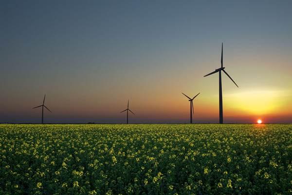 Ilustrasi energi terbarukan.  - Istimewa