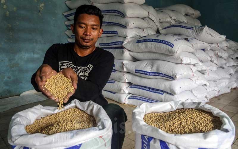 Pekerja menyortir kedelai yang baru tiba di gudang penyimpanan di Kawasan Kebayoran Lama, Jakarta, Senin (15/2/2021). Bisnis - Eusebio Chrysnamurti