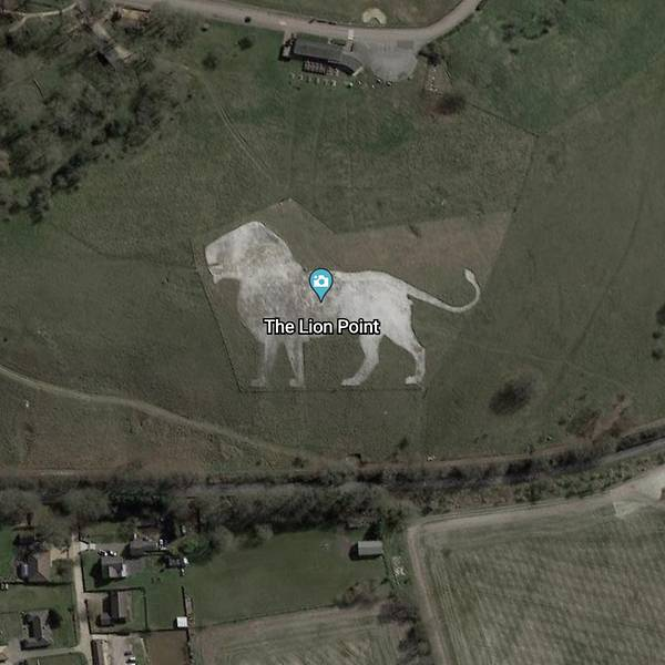 Gambar Lion King di Google Earth
