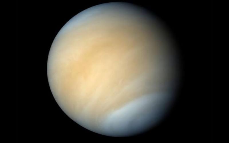 Penampakan Planet Venus - Istimewa
