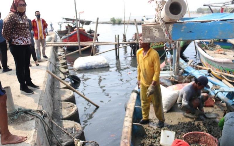 Potensi nelayan yang membudidayakan kerang hijau di Kota Cirebon perlu digali.
