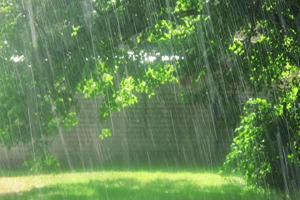 Ilustrasi hujan -