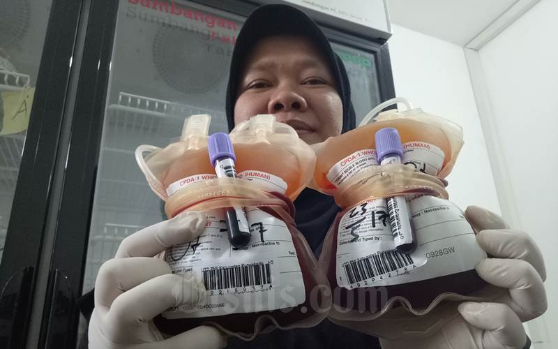 Ilustrasi - Donor darah - Bisnis/Asep Mulyana