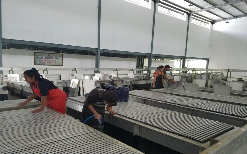 Pekerja sedangkan memproses karet di pabrik karet olahan milik PTPN XII di Pancursari, Rabu (16/6/2021). - Bisnis/Choirul Anam