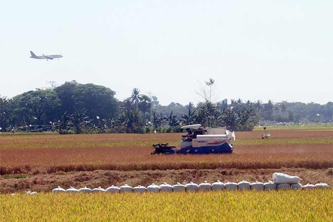 Mobil khusus memanen padi di Kabupaten Maros, Sulawesi Selatan, Selasa (13/8). Produksi beras dalam negeri diperkirakan mencapai 26,9 juta ton pada September 2019. Bisnis/Paulus Tandi Bone
