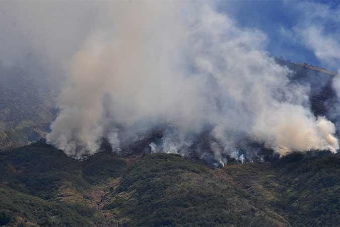 Kebakaran hutan gunung Sumbing terus meluas terlihat dari Desa Adipura, Kaliangkrik, Magelang, Jawa Tengah, Rabu (14/8). Kebakaran hutan gunung Sumbing terjadi sejak tiga hari lalu di wilayah kabupaten Wonosobo dan menjalar ke wilayah kabupaten Magelang yang menghanguskan puluhan hektar hutan dan ilalang. Antara/Anis Efizudin