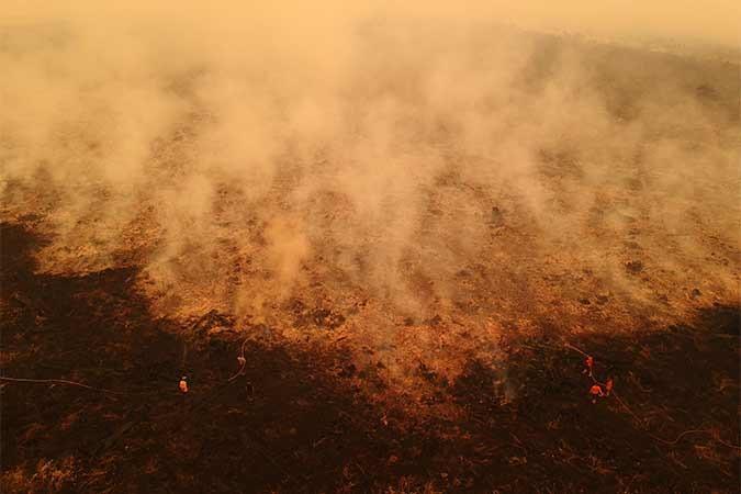 Petugas SAR Direktorat Sabhara Polda Jambi memadamkan kebakaran lahan gambut milik salah satu perusahaan di Puding, Kumpeh Ilir, Muarojambi, Jambi, Rabu (11/9/2019). Asap kebakaran hutan dan lahan di Provinsi Jambi telah mengakibatkan aktivitas belajar mengajar di beberapa kota/kabupaten setempat terganggu dan terpaksa diliburkan, sementara upaya pemadaman masih terus dilakukan sejumlah pihak. Antara/Wahdi Septiawan