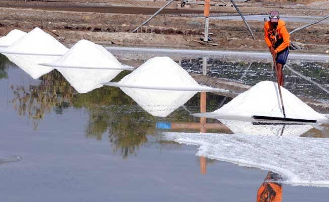 Petani memanen garam di Desa Bunder, Pamekasan, Jawa Timur, Selasa (8/10). Realisasi produksi garam per 30 September 2019 mencapai 1.407.637 ton yang terdiri dari produksi garam rakyat sebesar 1.171.492 ton dan produksi PT Garam 236.145 ton. Sementara sisa stok garam tahun 2018 sebesar 148.477 ton. Antara/Saiful Bahri