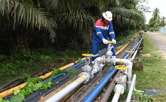 Petugas melakukan pemeriksaan pipa jaringan milik PT Pertamina EP Asset 1 Field Rantau di area Stasiun Pengumpul (SP) 8, Alur Bemban, Aceh Tamiang, Aceh, Kamis (7/11/2019). PT Pertamina EP Asset 1 Field Rantau menargetkan hingga akhir 2019 akan memproduksi minyak sebanyak 2938 BOPD dan gas 3,5 MMSCFD. Per Oktober 2019 telah diproduksi minyak sebanyak 3163 BOPD dan gas 3,6 MMSCFD. ANTARA FOTO/Muhammad Adimaja