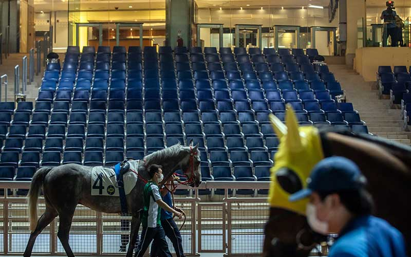 Asisten menggunakan masker memegang kuda di sela-sela perlombaan pecuan kuda yang tertutup bagi penonton karena virus corona di arena pacuan kuda Happy Jockey Club Hong Kong di Hong Kong, China, Rabu (25/3/2020). Hong Kong melihat kasus virus corona di luar negaranya yang melonjak sehingga memerintahkan warganya yang baru kembali dari luar negeri wajib mengikuti karantina selama 14 hari. Bloomberg/Paul Yeungn