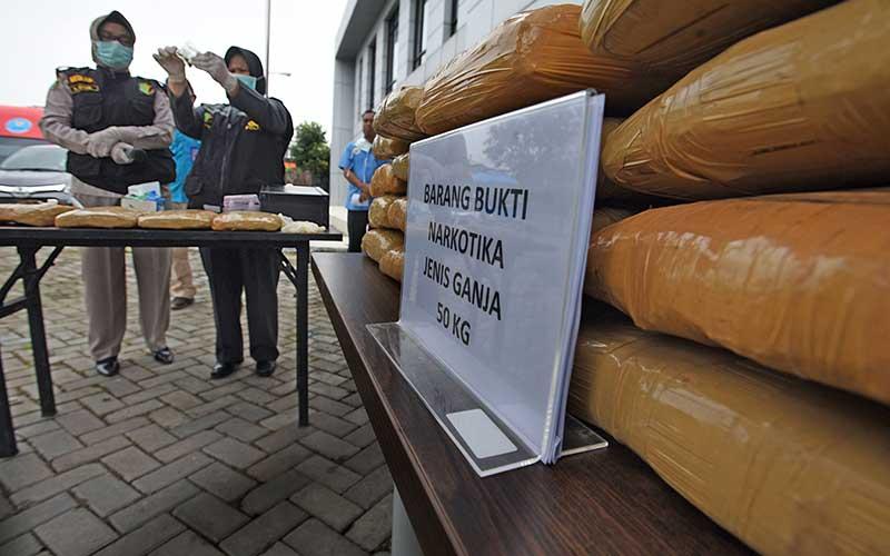 Petugas Laboratorium Polda Banten menguji sampel ganja kering saat Pemusnahan 50 Kilogram Ganja di Kantor BNN Provinsi Banten, di Serang, Kamis (26/3/2020). Petugas BNNP Banten menangkap kedua kurir saat akan mengambil kiriman paket 50 kilogram ganja dari Aceh yang disamarkan dalam empat keranjang asem jawa di Kantor jasa pengiriman yang setelah diusut ternyata ganja tersebut milik MF dan ND, dua warga binaan Lembaga Pemasyarakatan di Banten. ANTARA FOTO/Asep Fathulrahman