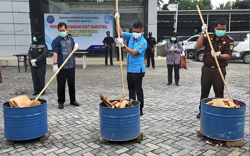 Kepala BNN (Badan Narkotika Nasional) Provinsi Banten Tantan Sulistyana (tengah) bersama jajaran Muspida membakar puluhan paket ganja saat Pemusnahan 50 Kilogram Ganja di Kantor BNN Provinsi Banten, di Serang, Kamis (26/3/2020). Petugas BNNP Banten menangkap kedua kurir saat akan mengambil kiriman paket 50 kilogram ganja dari Aceh yang disamarkan dalam empat keranjang asem jawa di Kantor jasa pengiriman yang setelah diusut ternyata ganja tersebut milik MF dan ND, dua warga binaan Lembaga Pemasyarakatan di Banten. ANTARA FOTO/Asep Fathulrahman