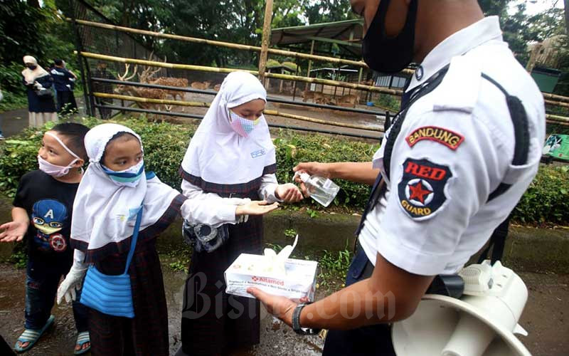 Petugas membagikan sarung tangan dan hand sanitizer kepada donatur saat mengunjungi Bandung Zoological Garden (Bazoga), Bandung, Jawa Barat, Rabu (3/6/2020). Jelang penerapan adaptasi kebiasaan baru (AKB) di Jawa Barat, Bazoga siap terapkan Standar Operational Prosedur (SOP) khusus jika tempat wisata ini kembali dapat izin operasi. SOP tersebut mengatur antara lain jarak antar pengunjung mengantre minimal 1,5 meter, pengunjung wajib menggunakan masker, serta wajib cek suhu tubuh untuk para pengunjung. Bisnis/Rachman