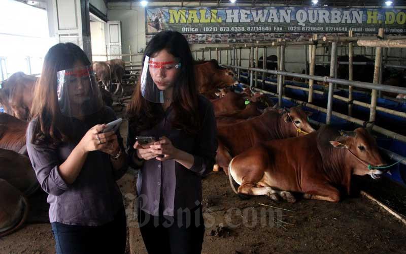 Sales Promotion Girl (SPG) beraktivitas di Mal Hewan Kurban Haji Doni, Kota Depok, Jawa Barat, Minggu (12/7/2020). Bisnis/Arief Hermawan P